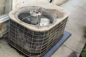 Limiting the Effect of Animal Damage on Your HVAC