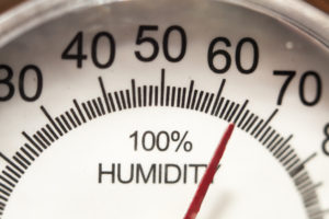 Humidity Levels: A Guide at Managing Them by Season