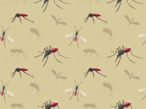 HVAC Tips: Keep Mosquitoes Out