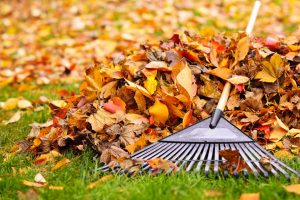 Yard and HVAC Maintenance: How to Keep Your Outdoor Unit Safe
