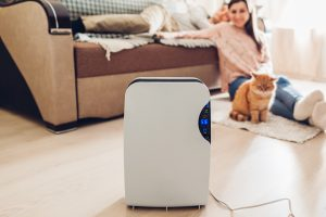Homeowners: What You Should Know About Whole Home vs. Room Air Purifiers