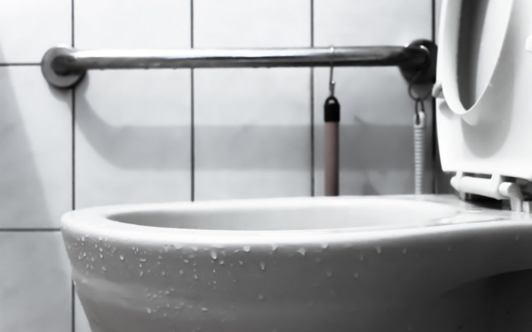 You Should Know What Causes a Toilet to Overflow