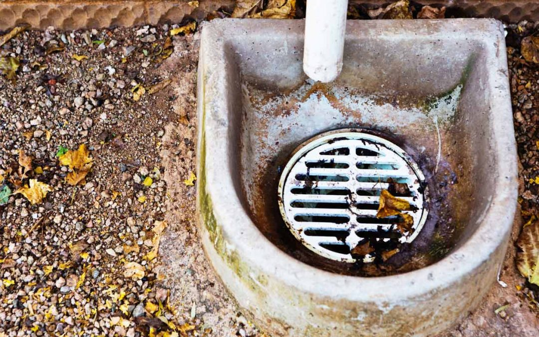 What to Do If You Find Your Outside Drain Clogged